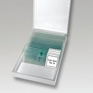 Objektträger in einer Box