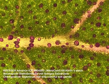 Bresser Mikroskop – Advance ICD