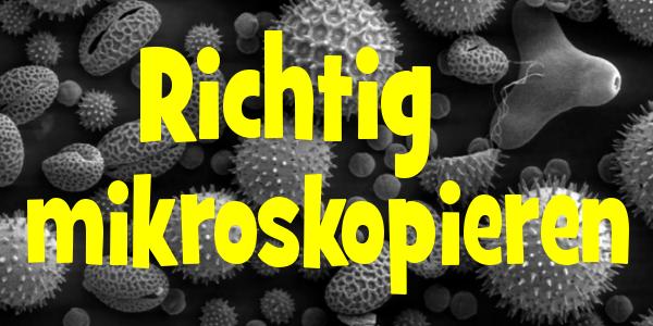 richtig mikroskopieren