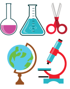 Was kann man alles mikroskopieren?
